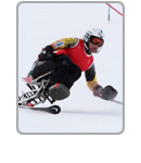 2013 IPC Alpine Skiing World Championships La Molina - IPC Alpine Skiing Icon