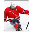 Norway hockey icon