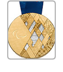 Sochi 2014 Medals Icon