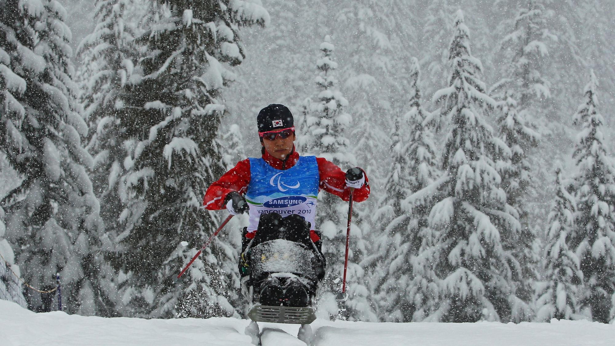 A female sit-skier competes at the Vancouver 2010 Paralympic Winter Games