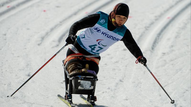 Para Nordic Skiing - Para Cross-Country skiing & Para