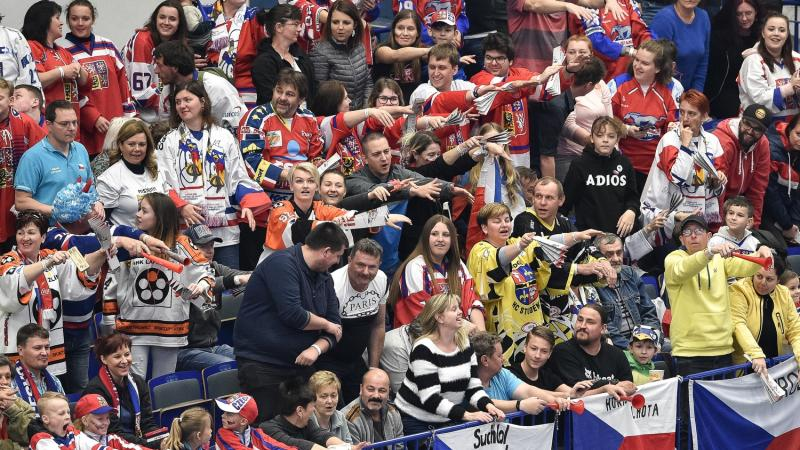 Czech Republic hockey fans cheer on their team