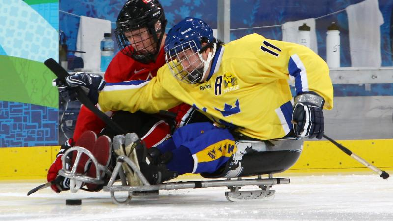Ice Sledge Hockey match - Sweden vs Canada