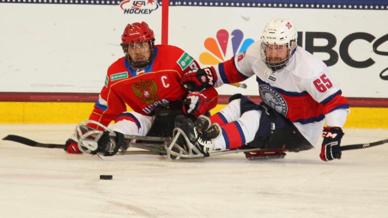 Two ice sledge hockey players chasing after the puck.