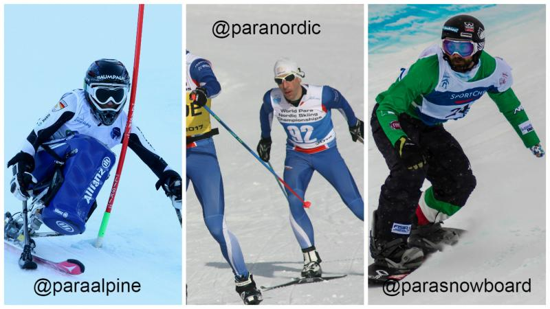 Alpine skiing, snowboard, nordic skiing - collage