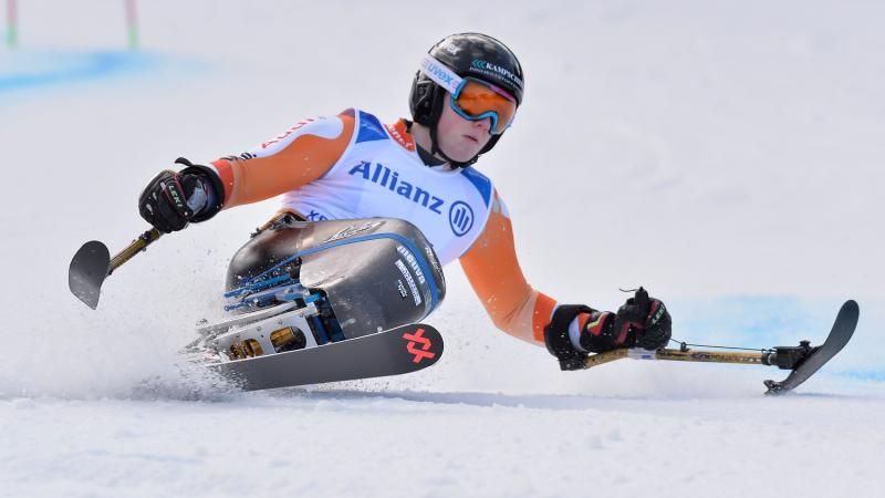 a male Para sit skier on the slopes