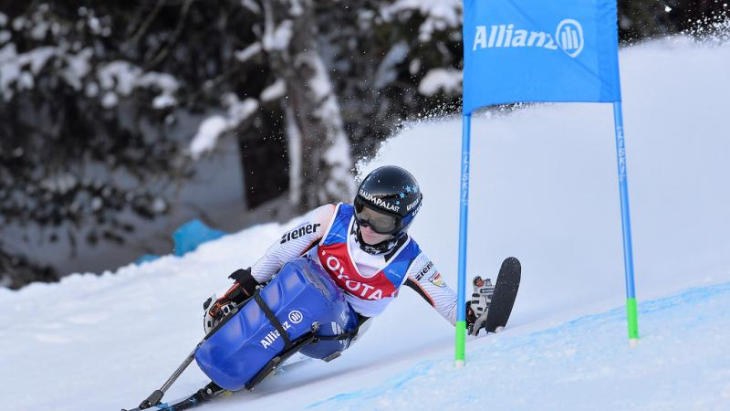 a female sit skier rounds a gate