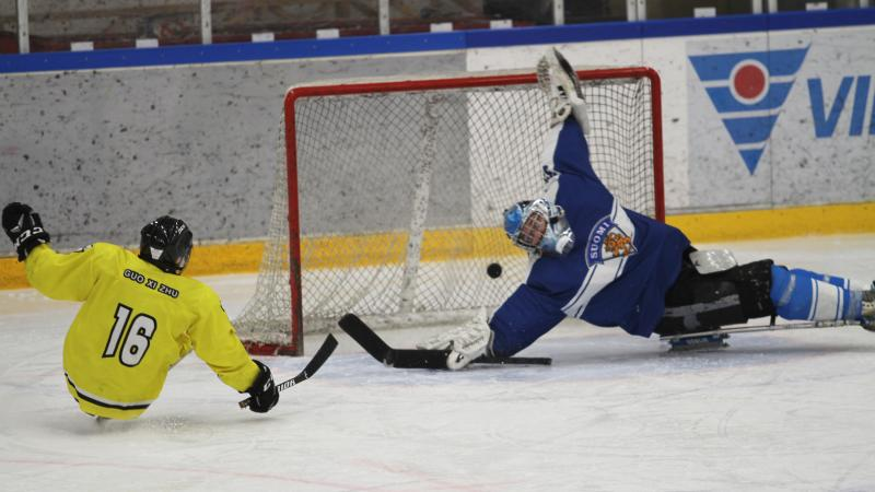 A man on sledge hockey scoring a goal against a goalkeeper trying to defend the puck