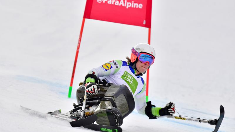 male Para alpine sit skier Jernej Slivnik goes round a gate on the slope