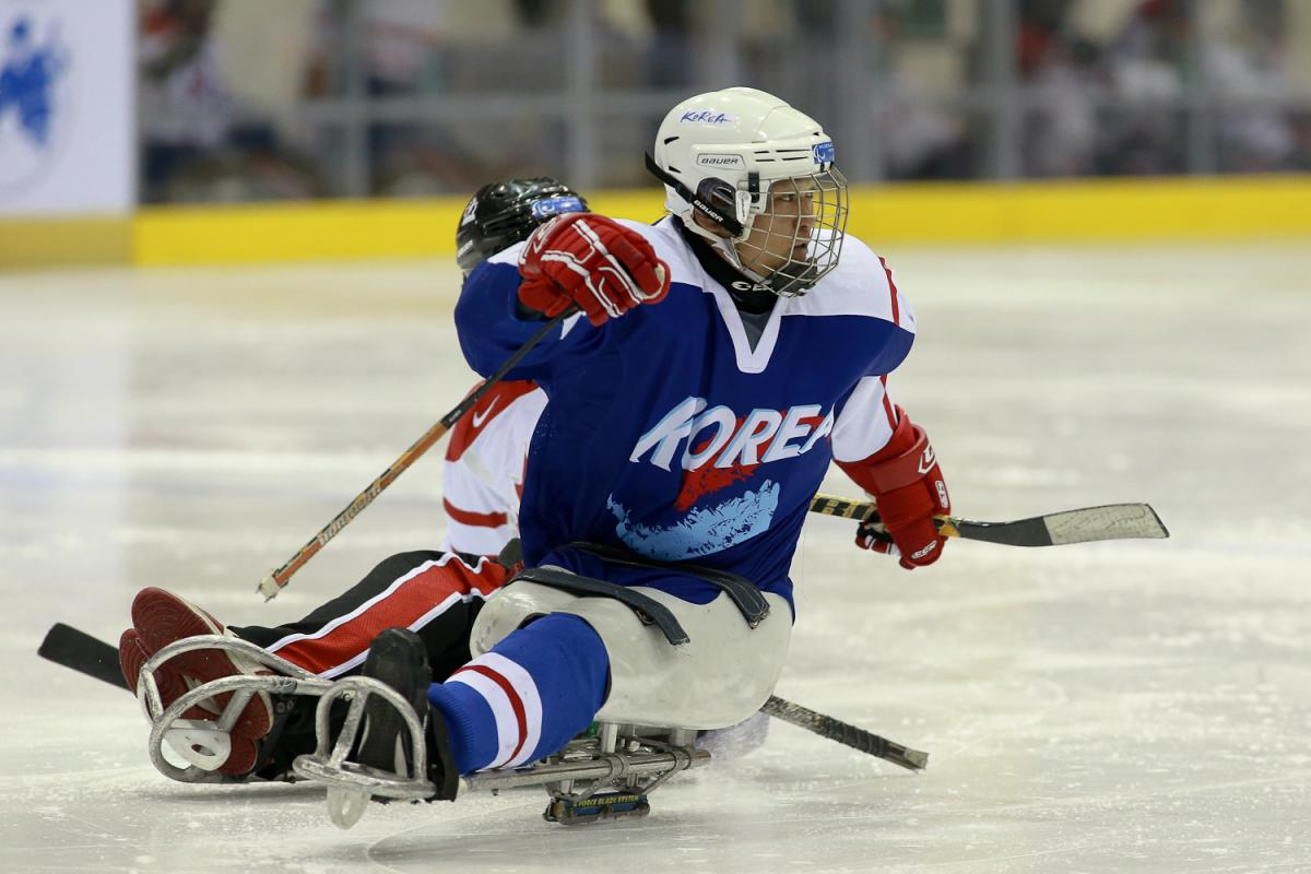 Korea ice sledge hockey