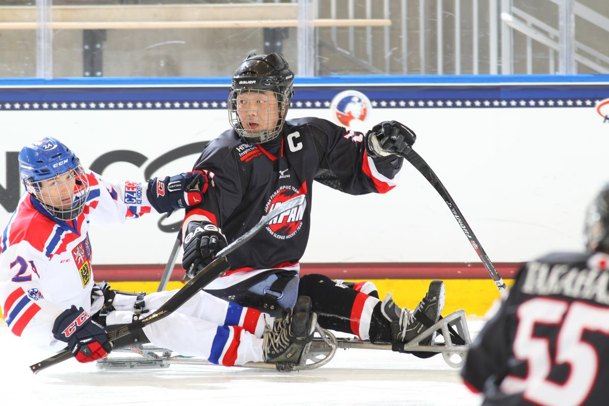 Ice sledge hockey players in action on the ice