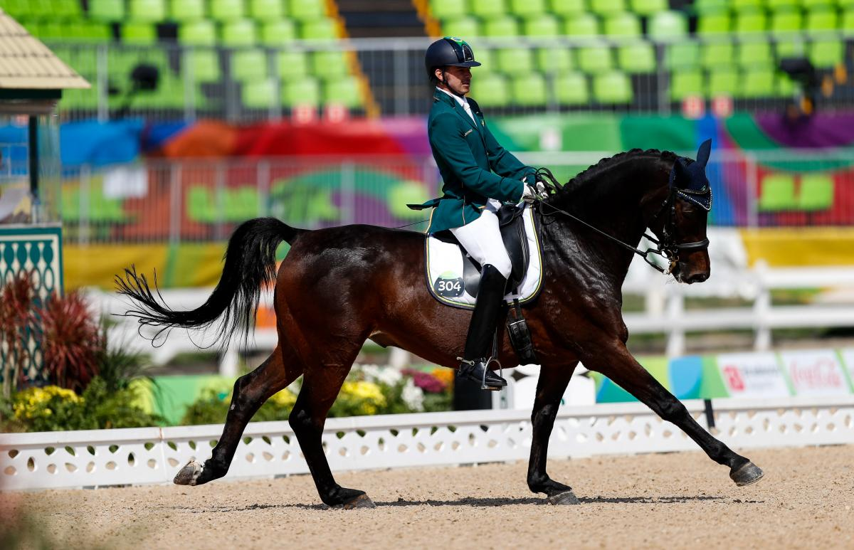 World Equestrian Games 2020.Tokyo 2020 The Path To Para Equestrian International
