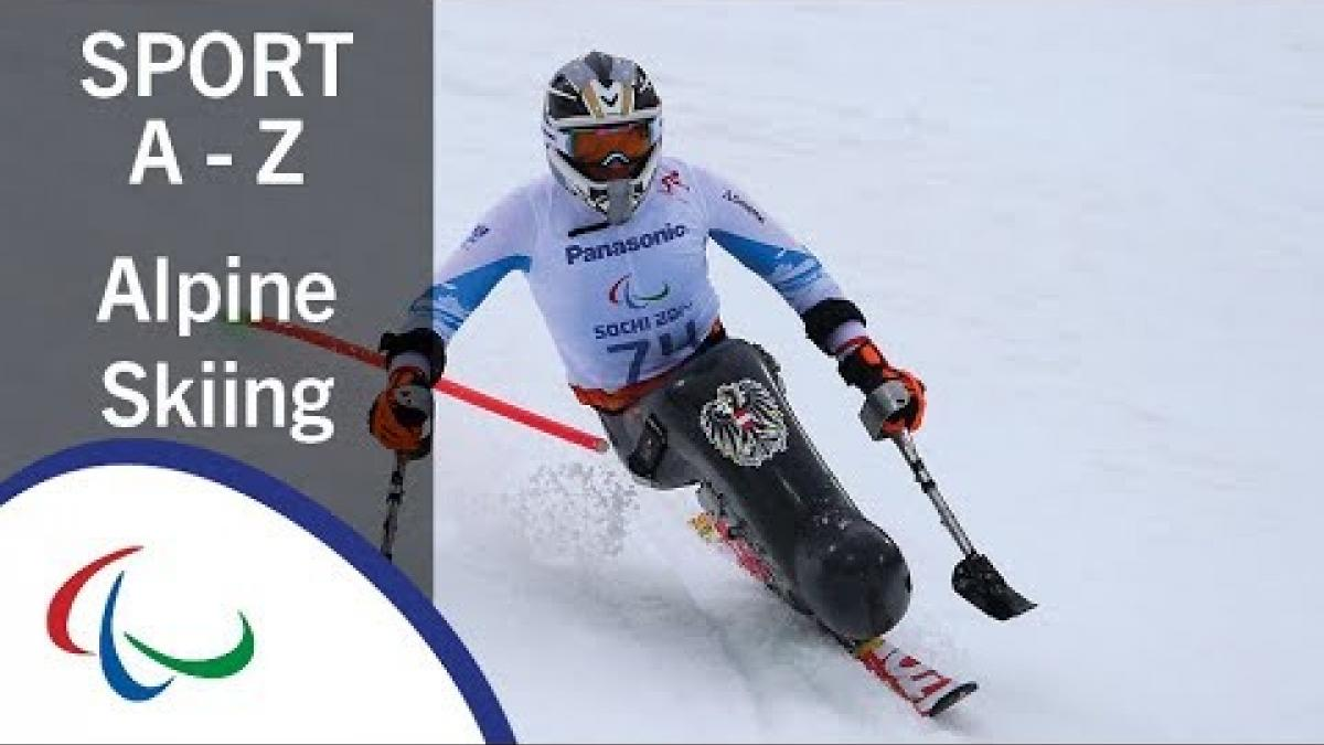 Sports of the Paralympic Winter Games: Para Alpine Skiing